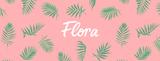 Flora Rosé Wine Spritzer beer