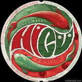 Magic Hat Hicu Cucumber Hibiscus beer