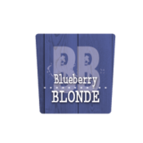 Blueberry Blonde Ale beer