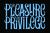 Mini singlecut the pleasure the privilege 1