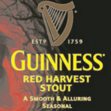 Guinness Red Harvest Stout beer