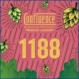Batch 1188 Hazy Double Ipa beer