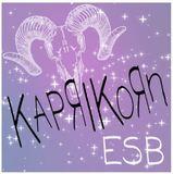 Chafunkta KapriKoRn ESB beer