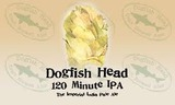 Dogfish Head 120 Minute IPA beer