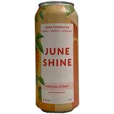 Juneshine Hopical Citrus beer