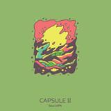 Hudson Valley Capsule II beer
