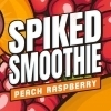 Connecticut Valley Spike Smoothie Peach Raspberry beer