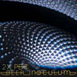 Chafunkta 2XPBC Beer Inoculum beer