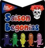 Austin Brothers Saison Begonias beer
