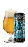 Great Lakes Tidal Fury Imperial Hazy IPA beer