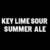Mini five boroughs key lime sour summer ale 1