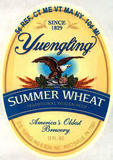 Yuengling Summer Wheat Beer