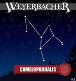 Weyerbacher Camelopardalis beer