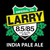 Mini wachusett larry imperial ipa 4