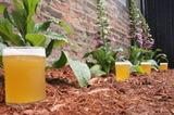 Newburgh Saison beer