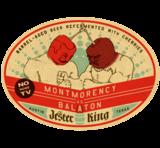 Jester King Montmorency vs. Balaton beer