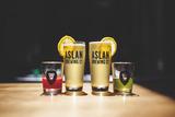 Aslan Organic Disco Lemonade Beer