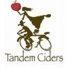 Tandem Ciders Strawberry Jam beer