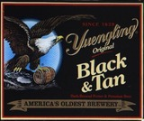 Yuengling Black & Tan beer