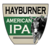 Mini big ditch hayburner ipa 1