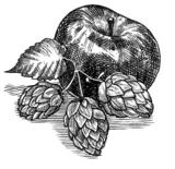 Millstone Hopvine Beer