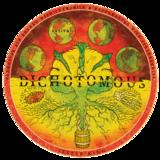 Jester King Estival Dichotomous beer