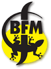 BFM Abbaye de Saint Bon-Chien 2012 Zymatore (Sherry) beer