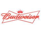 Budweiser Stein beer
