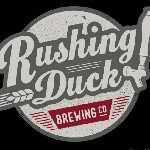 Rushing Duck Divided By Zero IPA beer Label Full Size