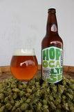 Drake's Hopocalypse Double IPA beer