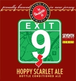 Flying Fish Exit 9 beer