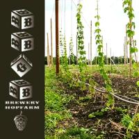 BBGB Brewery & Hop Farm