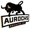 Square mini aurochs brewing 9e852038