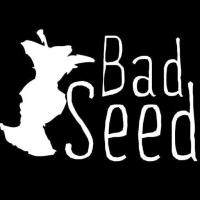 Bad Seed Cider Co.