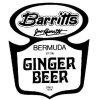 Square mini barritt s ginger beer e577f2b0