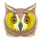 Thumb the owl