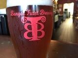 Thumb bangor trust brewing