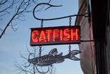 Thumb catfish