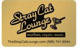 Thumb stray cat lounge